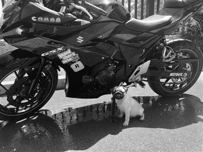 """下单存在漏洞 小偷两次用""""货拉拉""""来偷运摩托车"""