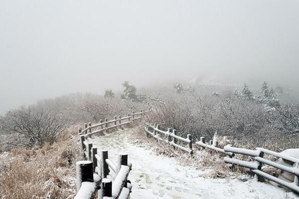 韩国雪岳山迎初雪 银装素裹美景如画