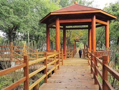 天津湾公园提升改造工程接近尾声