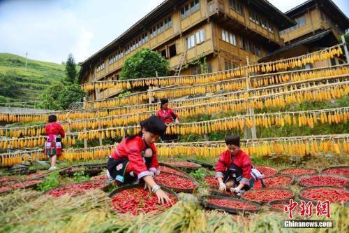 农业农村部副部长谈产业扶贫:着力解决农产品卖难