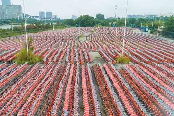 2万辆公共自行车停在广州大学城 航拍场面震撼