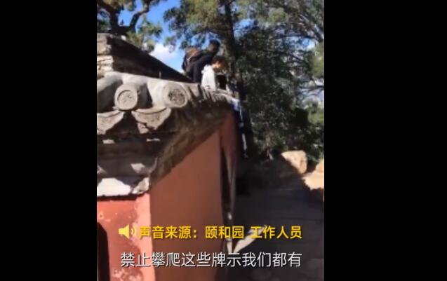 老外爬上颐和园围墙拍照 目击者:瓦片被踩掉