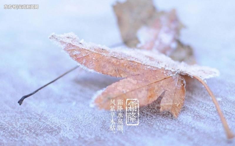 宝鸡:霜降让冬天的脚步越来越近