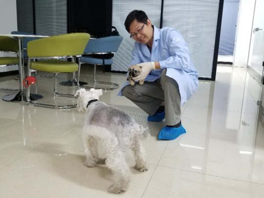 克隆宠物犬:争议相随 DNA一样却无法复制灵魂
