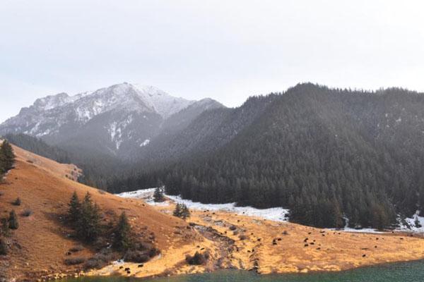 甘肃肃南祁连山腹地迎降雪 数百里冰雪画廊似水墨丹青