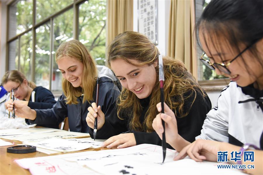 丹麦中学生中国校园体验传统文化