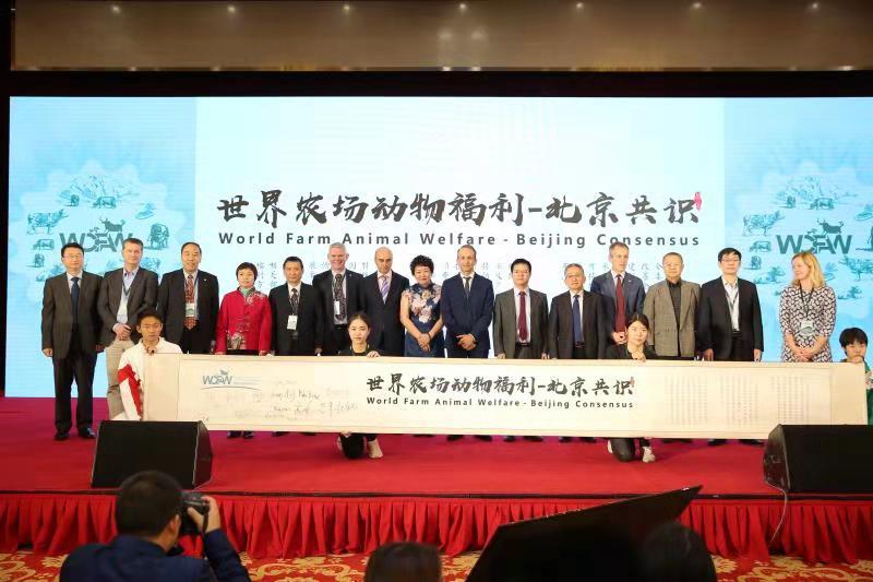 关注动物福利 世界农场动物福利大会在北京召开