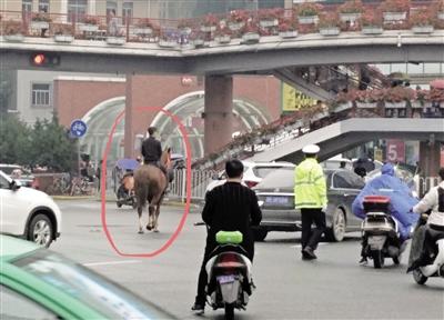 小伙骑马闹市街头闲逛 交警:造成堵塞可处罚