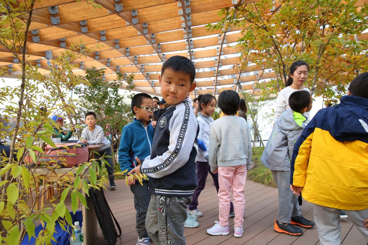汉能庭园家里的童真童趣 这里的脑洞真的不止一点点