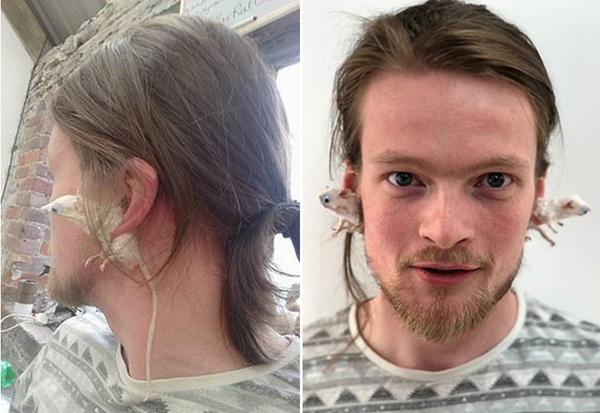 英动物标本制作师将老鼠标本打造成别致耳环