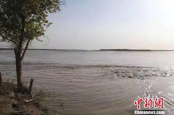 新疆启动塔河流域十万亩冬小麦休耕试点