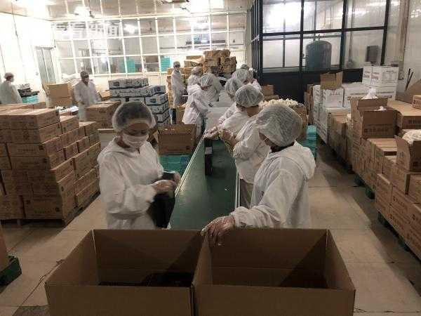 进口博览会期间牛奶棚食品赶制5万份应急备餐盒