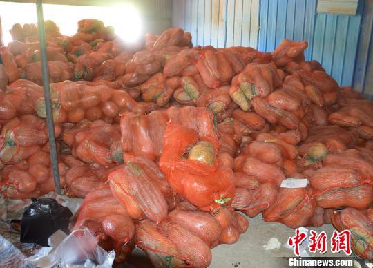 重庆警方破获运毒案 20吨南瓜中藏毒2.8千克被查获