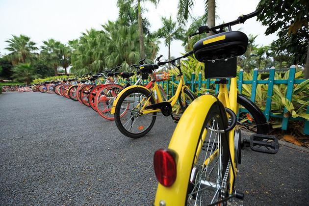 跨省共享单车投资返利诈骗案破获 短期