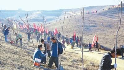 米东区启动秋季荒山绿化项目