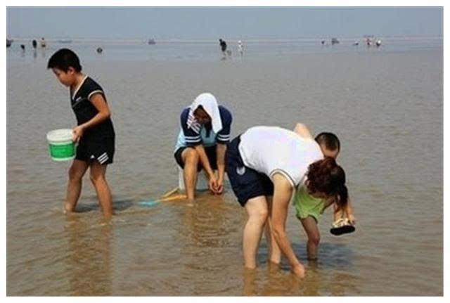 中国游客到韩国吃虾,300元上一盆,看到吃法捂着嘴走了!