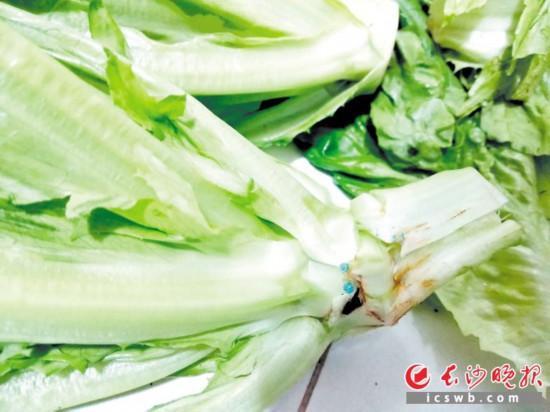 部分菜店的蔬菜有蓝色残留物专家:清洗干净无碍