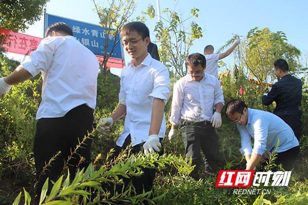 株洲天元检察公益诉讼助力清除外来入侵植物