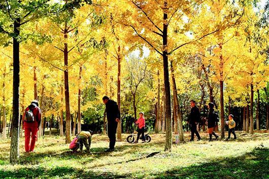 生态文明宜居北京城市副中心未来之城正在崛起
