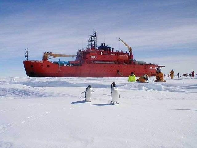 """由于担心南极洲的""""衰落"""",澳大利"""