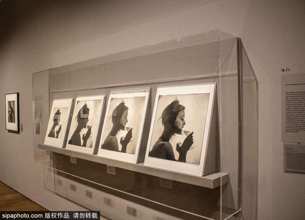 巴西圣保罗:北美摄影师Irwing Penn诞辰100周年摄影展