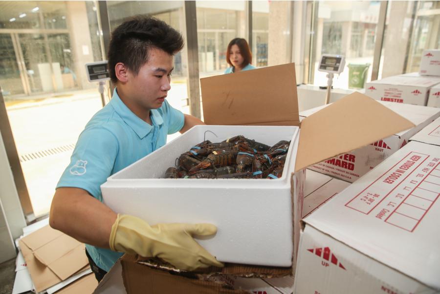 天猫双11第十年:盒马波龙销量比去年同期增323%