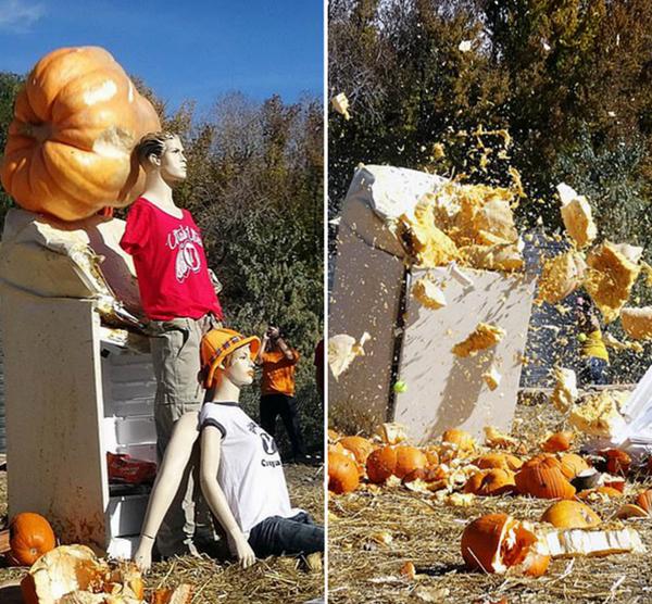 暴力万圣节!美巨型南瓜自由落体砸扁家具汽车