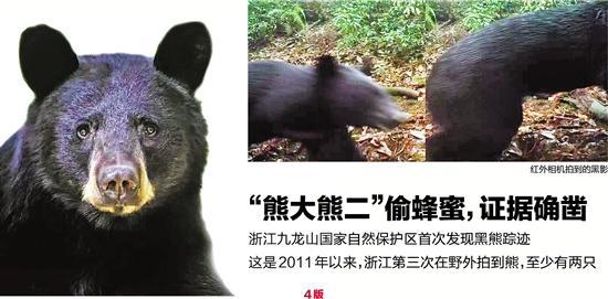 浙江九龙山自然保护区首次发现黑熊踪迹(图)