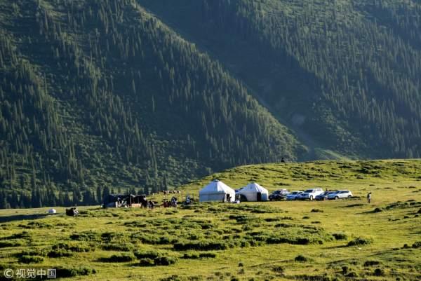 新疆伊犁,天山牧場