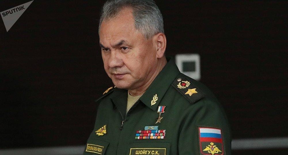 俄防长:俄将经常在地中海水域举行大型演习