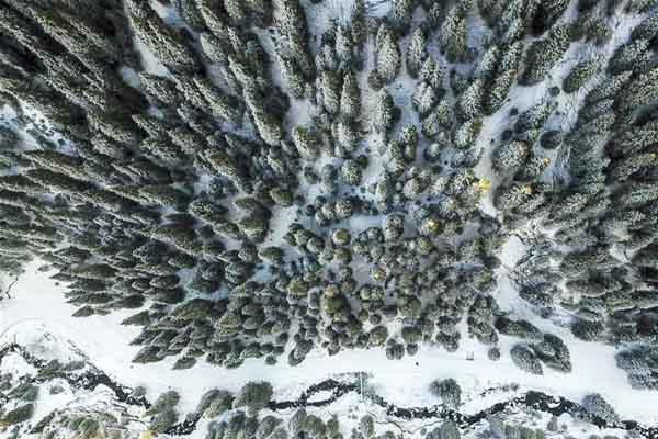 乌鲁木齐南山雪景美