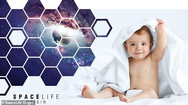 荷兰公司计划2024年将孕妇送往太空分娩