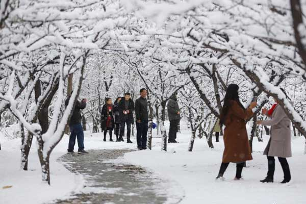 甘肃平凉深秋大雪 民众雪中寻冬趣
