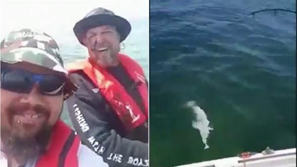 滑稽!澳渔民钓起乌贼意外被喷一脸墨