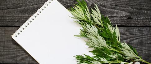 新鲜艾草的功效与作用是什么