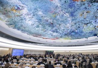 国际社会高度评价中国人权成就