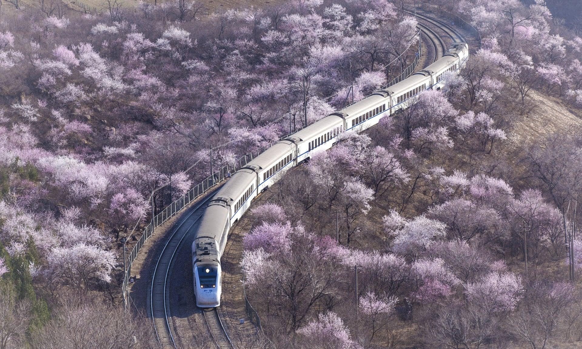 中国将在2030年前成为世界第一旅游目的地国