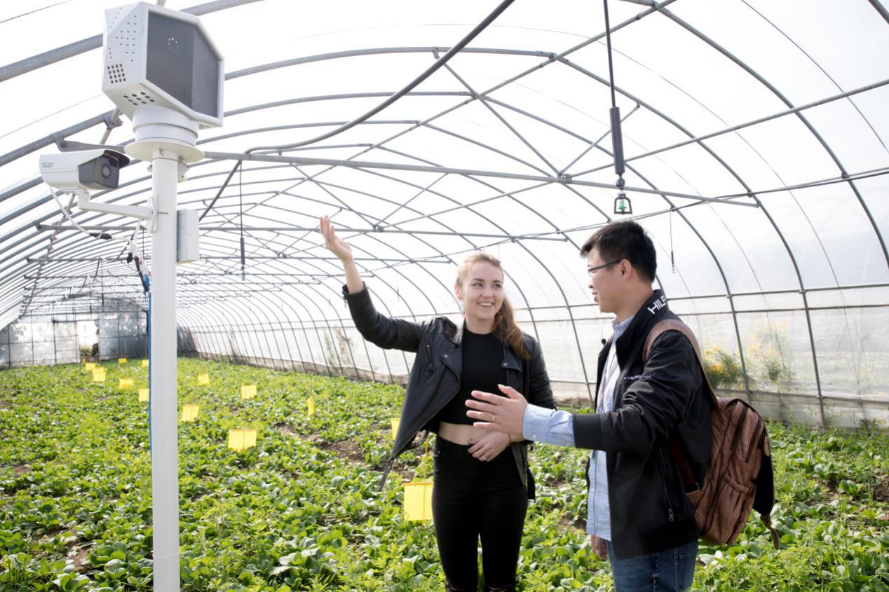 俄美女探访盒马物联网农场 揭秘双11新零售黑科技