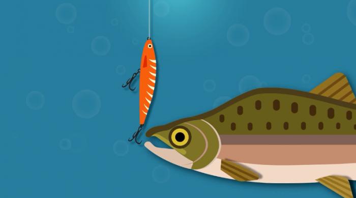 争议不断:鱼可以感受到痛苦吗?