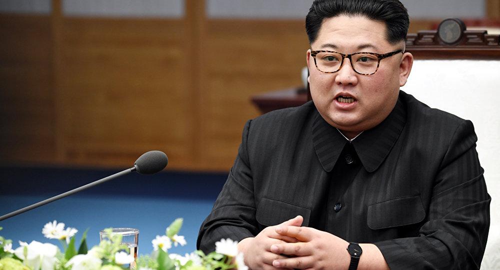 俄媒:克宫消息称,金正恩可能于2019年访俄
