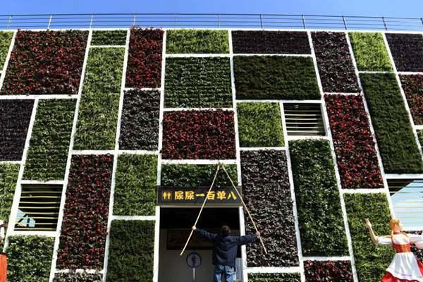 """重庆""""高颜值""""公厕亮相街头 墙上栽满鲜花和绿色植物"""
