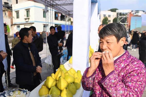 重庆:长寿柚乡村文化旅游节拉开帷幕