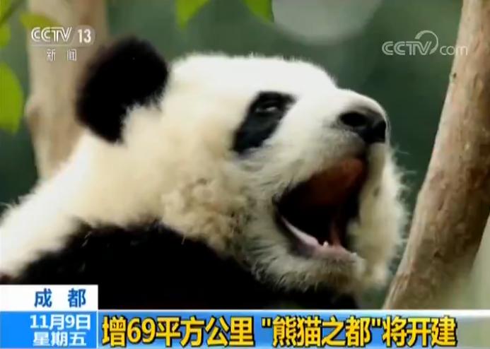 """成都增69平方公里 """"熊猫之都""""将开建"""