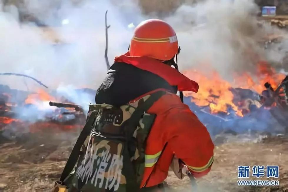 """我要""""火""""!消防员:不,你不想!"""