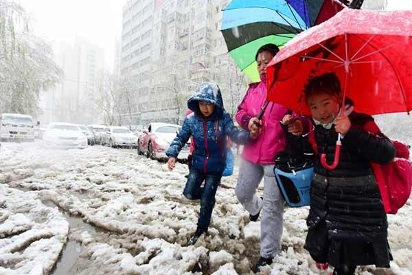 黑龙江发布暴雪黄色预警