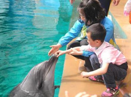 中国孤独症儿童患者逾300万 专家呼吁关注其生命全程