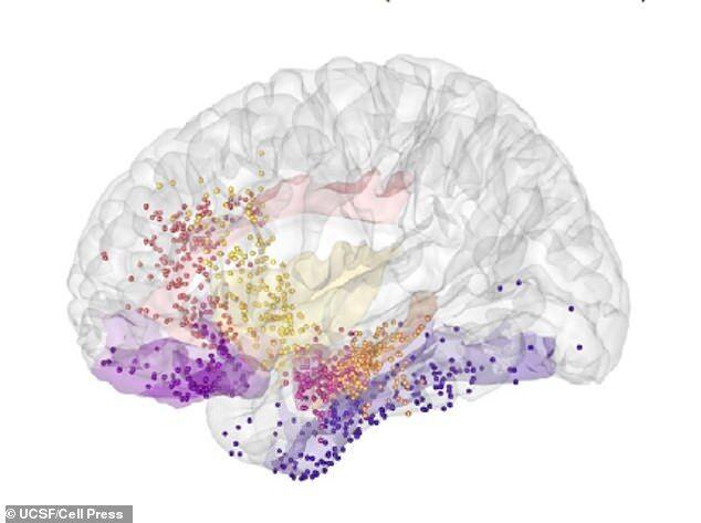 美国研究: 抑郁可通过脑部扫描诊断治疗