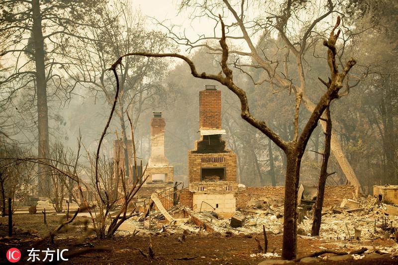 加州山火已致31死超200人失踪 豪宅成废墟恍如世界末日