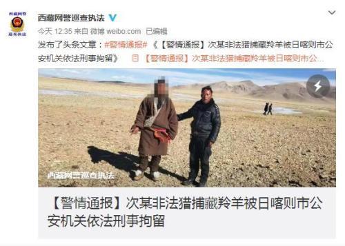 男子非法猎捕藏羚羊 被公安机关依法刑事拘留