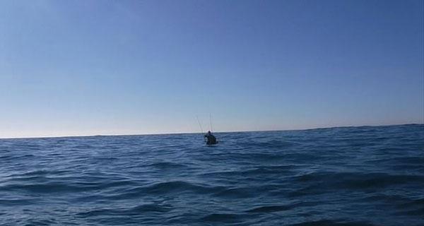 刺激!美渔夫意外钩住大白鲨 拍下其游过皮划艇瞬间
